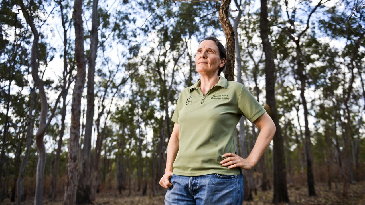 Dr. Rebecca Larkin of the Ipswich Koala Protection Society.