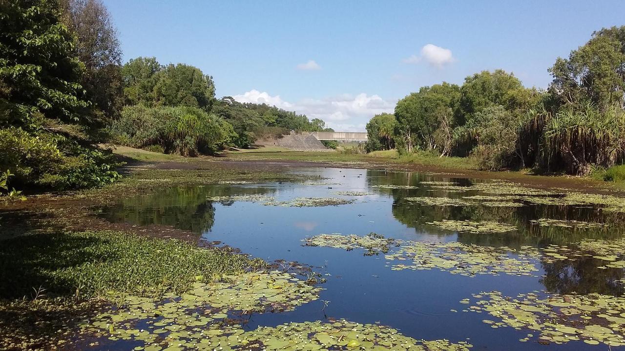 The Mackay Regional Botanic Gardens lagoon.
