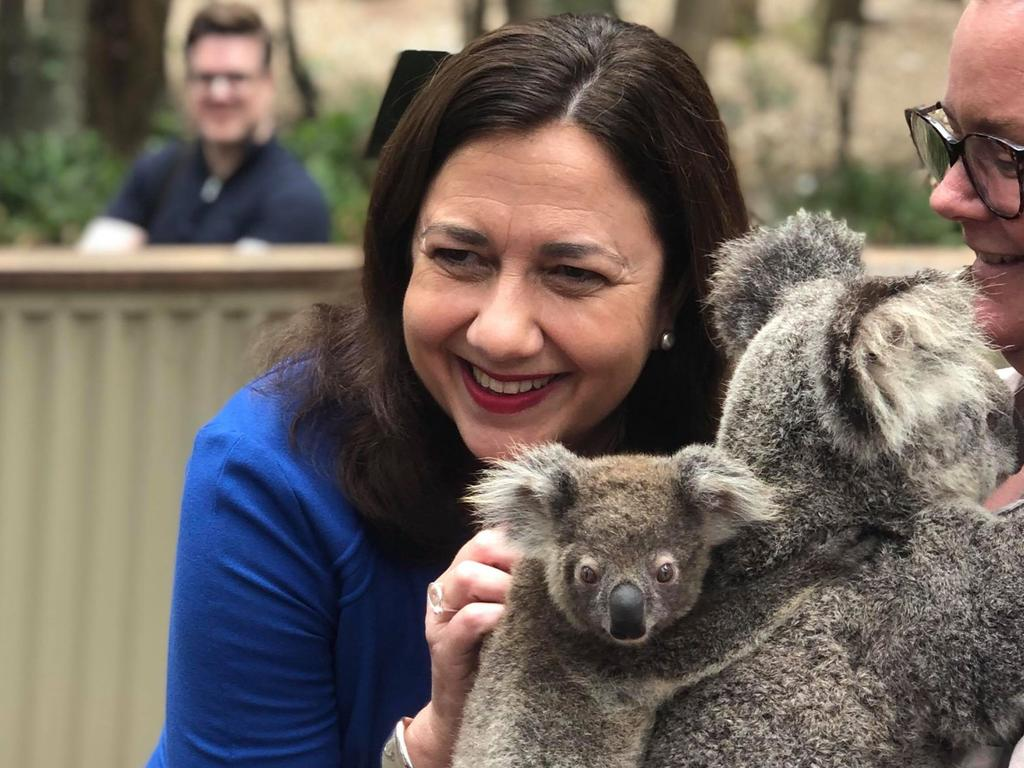 Ms Palaszczuk pointed to her home state, where fires that have raged in recent months are not currently threatening. Picture: Facebook