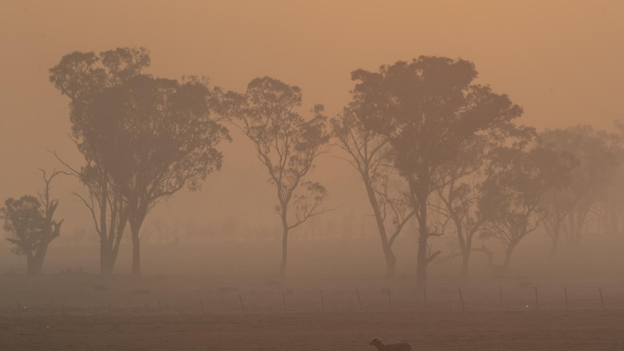 The bushfire smoke around the country has been at hazardous levels for months