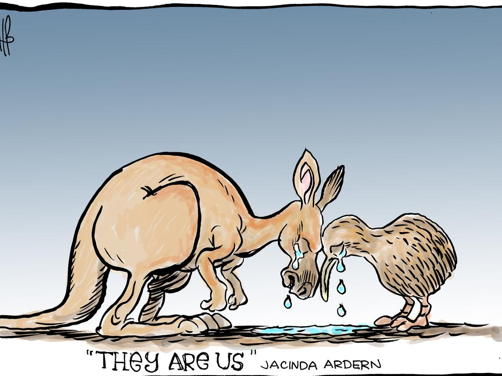 Harry Bruce's cartoon for the Daily Mercury for March 17 2019.