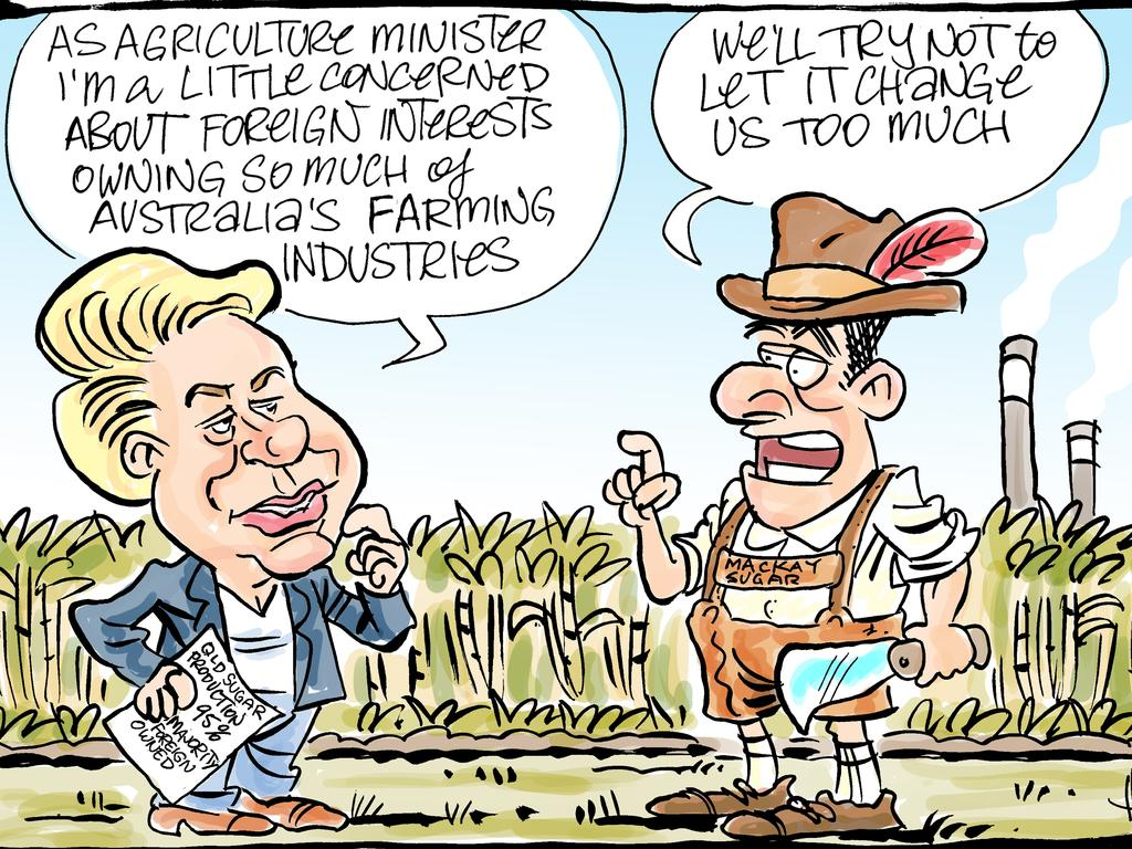 Harry Bruce's cartoon for the Daily Mercury for July 29 2019.
