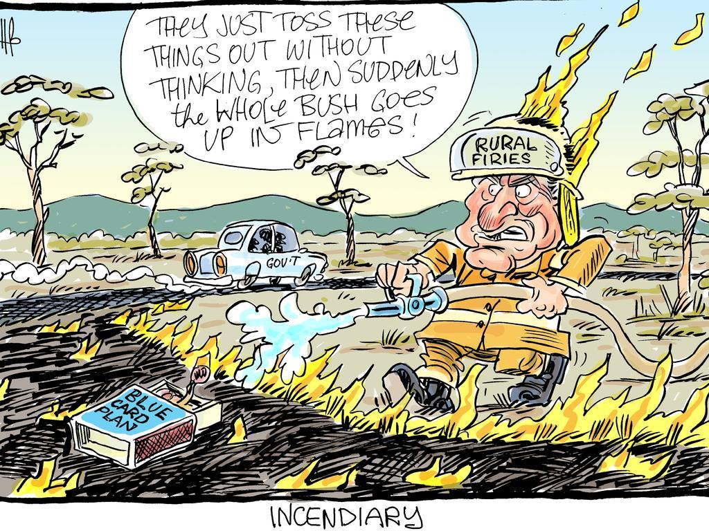 Harry Bruce's cartoon for the Daily Mercury for November 5 2019.
