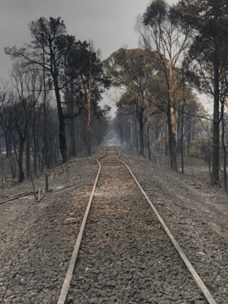 The aftermath of the Balmoral bushfires in NSW: Picture: Liam Cuneen