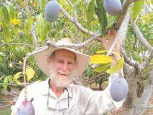 Mango tasting event leaves a sweet taste