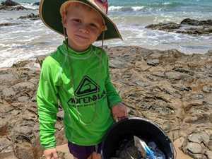 Little Wildlife Warrior up for Coast award