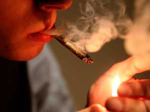 Tiny number of users smoking most of nation's weed