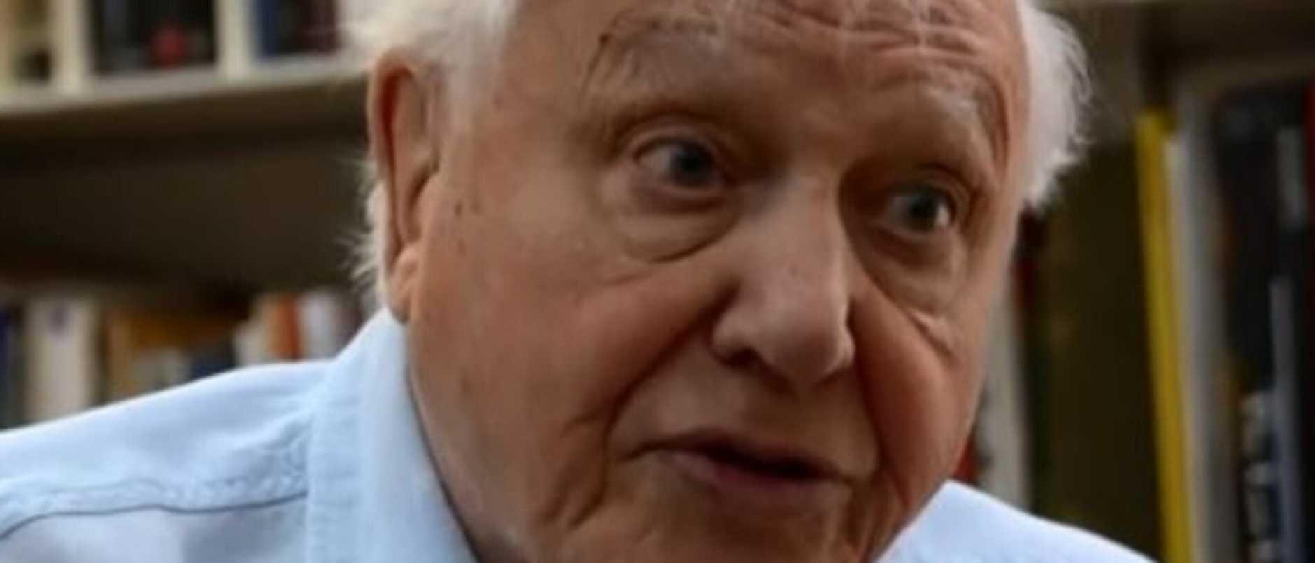 Supplied Editorial David Attenborough speaks to BBC News about Australia's bushfire  crisis. Picture: BBC