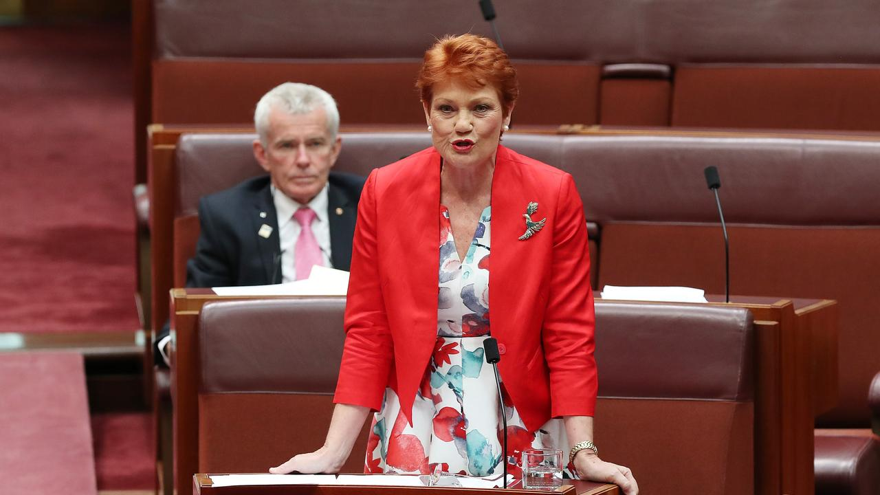 Senator Pauline Hanson in the Senate Chamber at Parliament House in Canberra. Picture Kym Smith