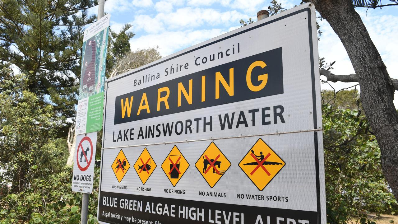 RED ALERT: Lake Ainsworth is closed to swimming due to a blue-green algae outbreak.