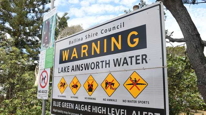 Popular lake closed to swimming after toxic algae outbreak