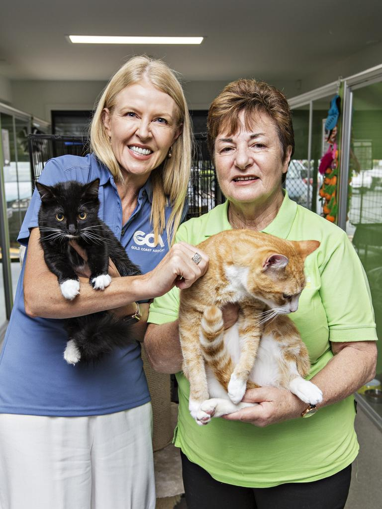 Gold Coast Airport Chief Operating Officer Marion Charlton joins Friends of the Pound president Sonia Tritcher and some of the animals at the Friends facility at Tweed Heads South. Photo: MEL BELANIC