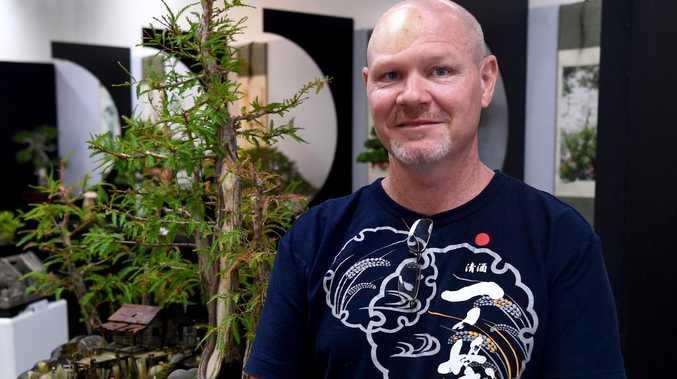 Bonsai is a growing art at Kern Arcade pop-up this weekend