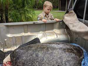 Young Wildlife Warrior helps save animals