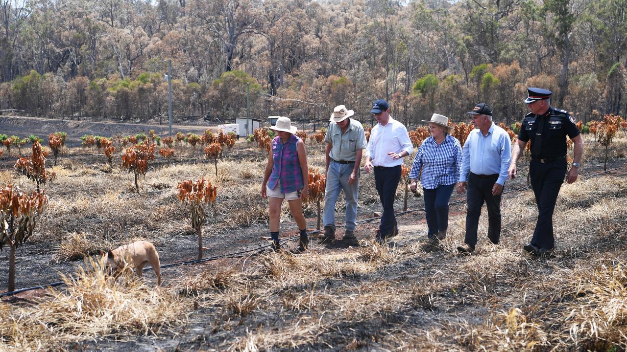 Bungundarra farmers Joycelyn and Robert Sikes show David Littleproud, Michelle Landry, Bill Ludwig and Steve Smith fire damaged mango trees from the Cobraball bushfire.