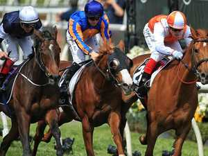 What is next mission for Melbourne Cup winner?