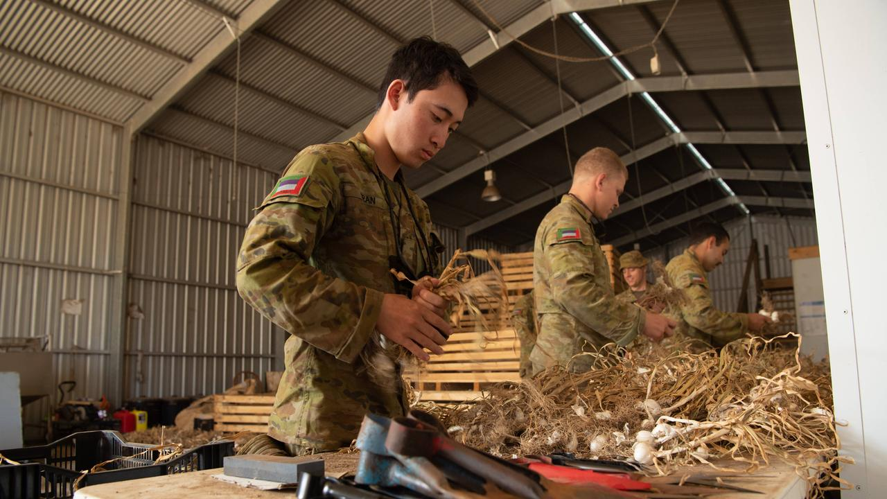 Army Reservists Pvt Andy Tran, Pvt Matthew Oakley and Pvt Johannes Schoeman help prepare garlic on Shane's farm. Picture: Brad Fleet