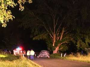 Three people killed in horror crash as car left road