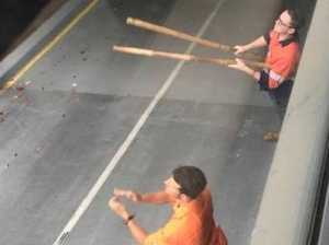 Qld Rail workers paid to chase away birds
