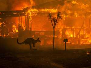 Behind the lens of Australia's bushfire crisis