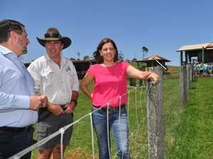 Maleny Dairies 'utterly betrayed' in 'farcical' decision