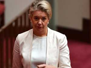 PM orders Bridget McKenzie sports scandal investigation