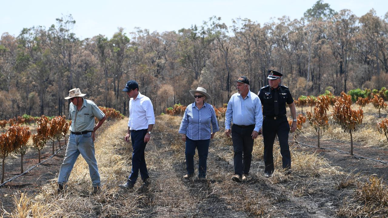 Bungundarra farmer Robert shows David Littleproud, Michelle Landry, Bill Ludwig and Steve Smith his Cobraball bushfire damaged crop of mango trees.