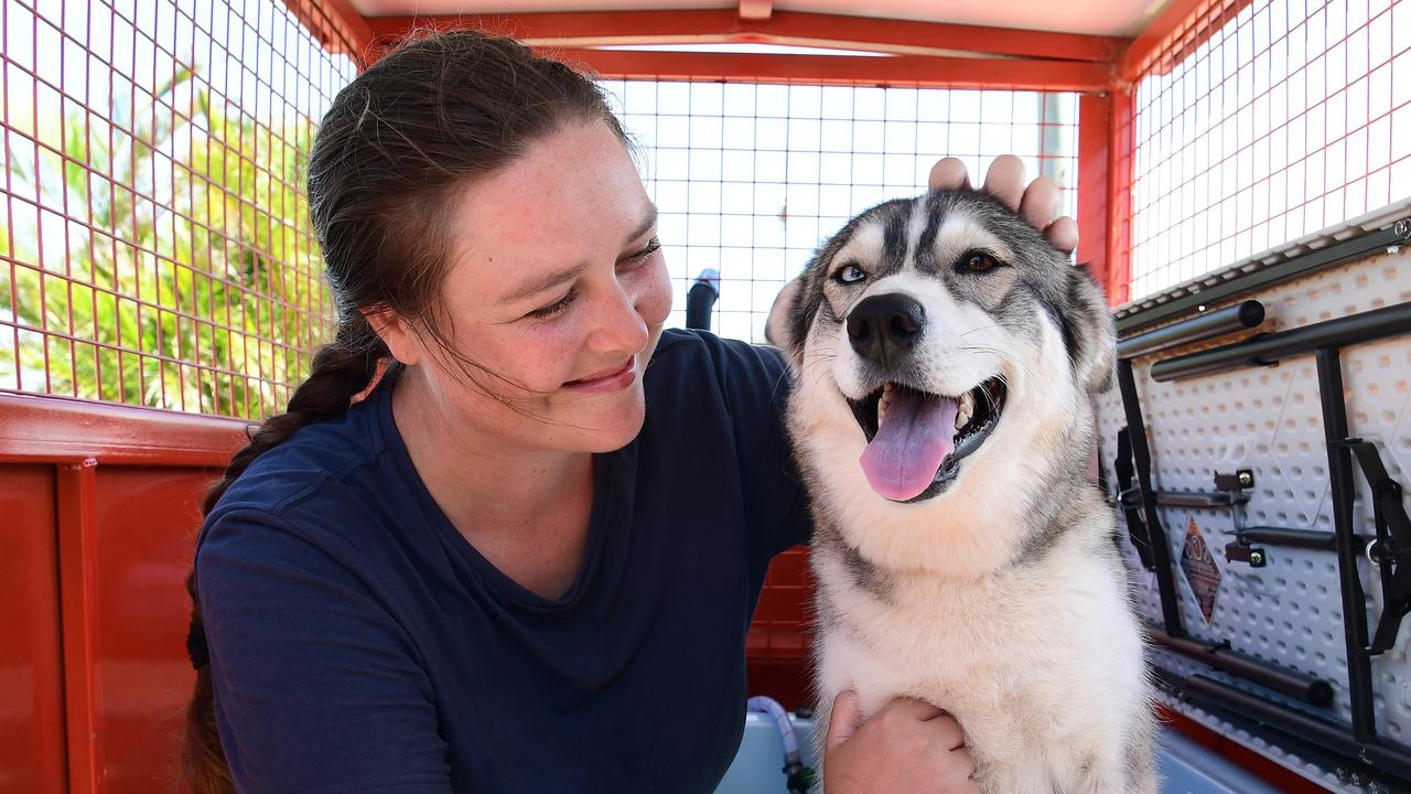 BATH TIME: Furry Paws Pet Wash owner Tessa Power with Daisy.