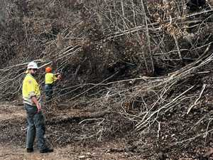 Recovery teams move in to assess bushfire damage