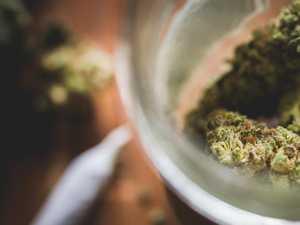 Police raid busts 'regular' cannabis smoker