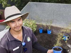 City garden centre gives back on Australia Day weekend
