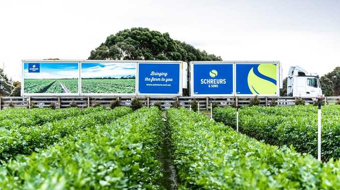 Refrigerated van gives celery specialist competitive edge