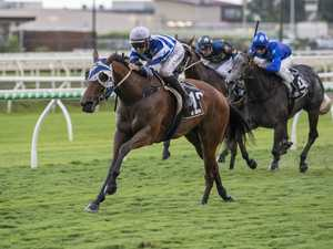 Pennino set to storm home late in Sunshine Coast Cup
