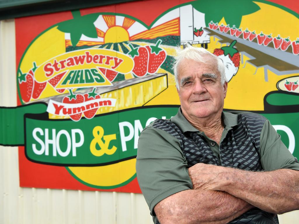 PROUD AS PUNCH: Maurie and Von Carmichael are selling their Strawberry Fields farm after 42 years in the business. Photo Patrick Woods / Sunshine Coast Daily.