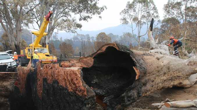 267 charged over bushfires as police announce crackdown
