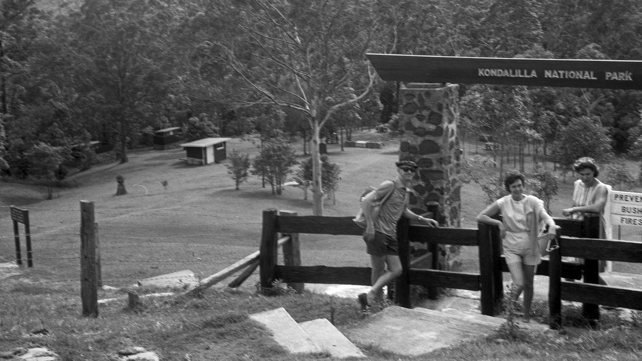 At the entrance to Kondalilla National Park, Blackall Range, 1964.
