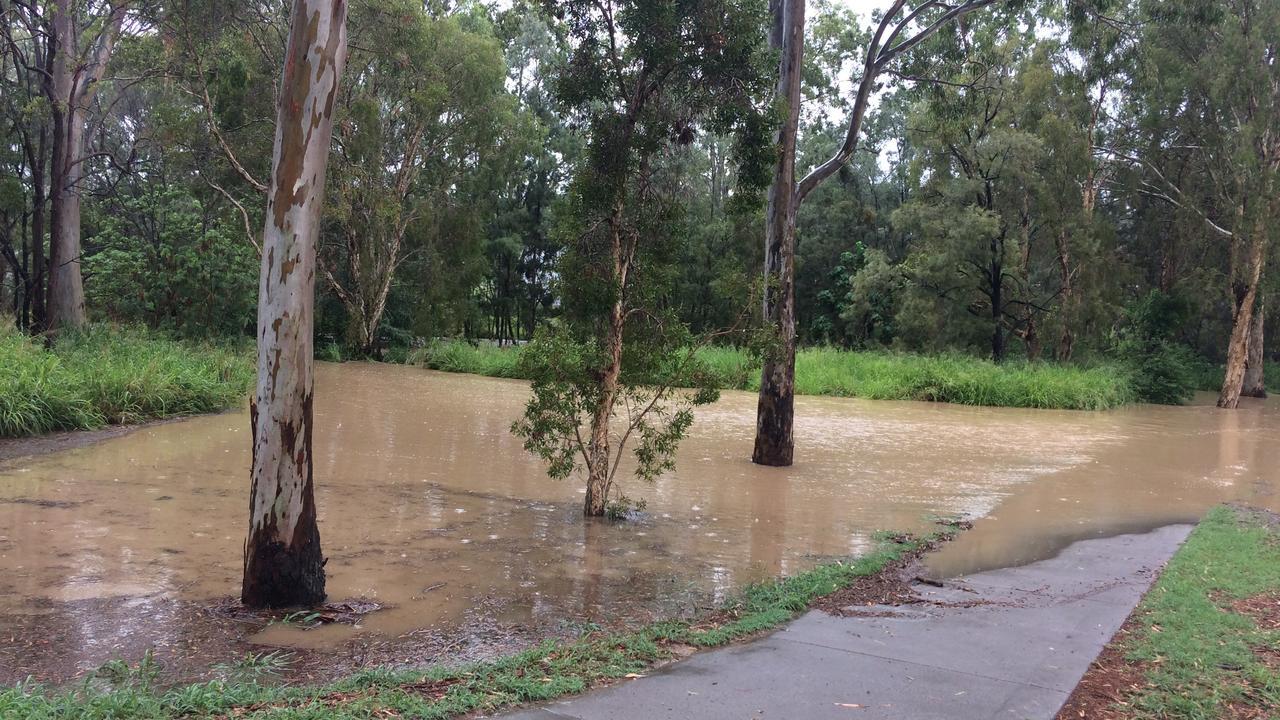 Briffney Creek near Bunnings is flowing heavily after big rains January 24, 2020