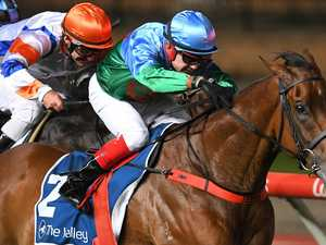 Horse dies, jockey hurt in horror race fall
