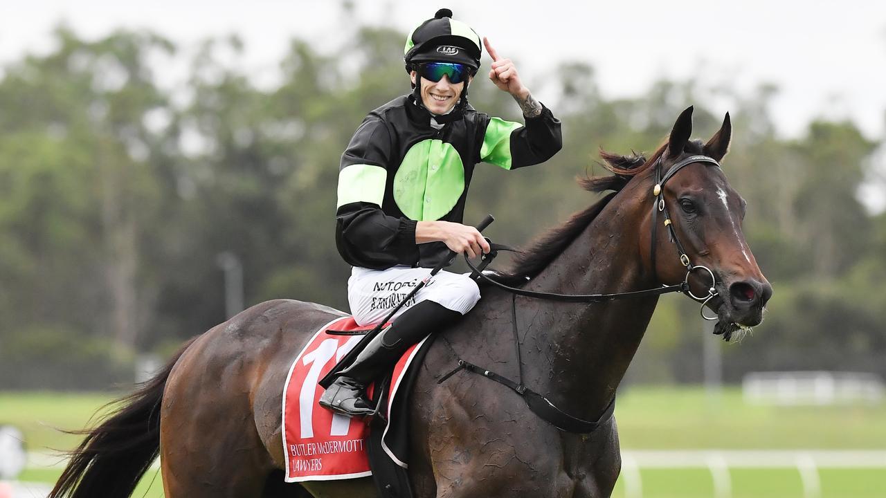 WINNER: Boris Thornton claimed victory with Scallopini in the Sunshine Coast Cup. Photo Patrick Woods / Sunshine Coast Daily.