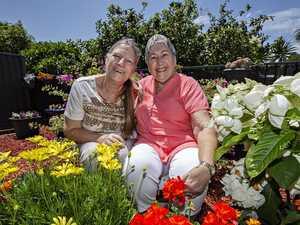 Meet the Tweed's best neighbours who bloom community spirit
