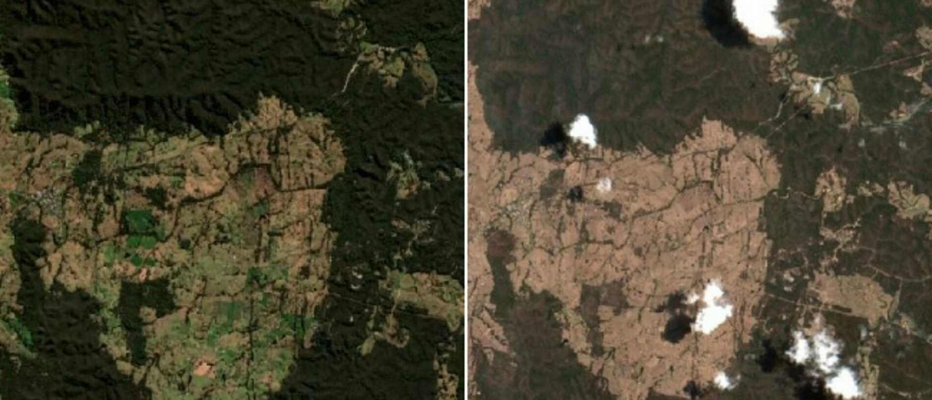 Never-before-seen satellite images show NSW towns before and after the bushfire crisis, revealing the devastating scale of the state's worst-ever fire season.