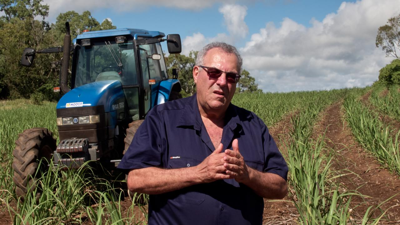 Canegrowers Queensland chairman Paul Schembri.