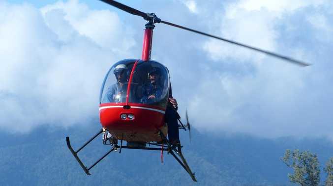 FERAL: Council shoots down aerial pest culling plans