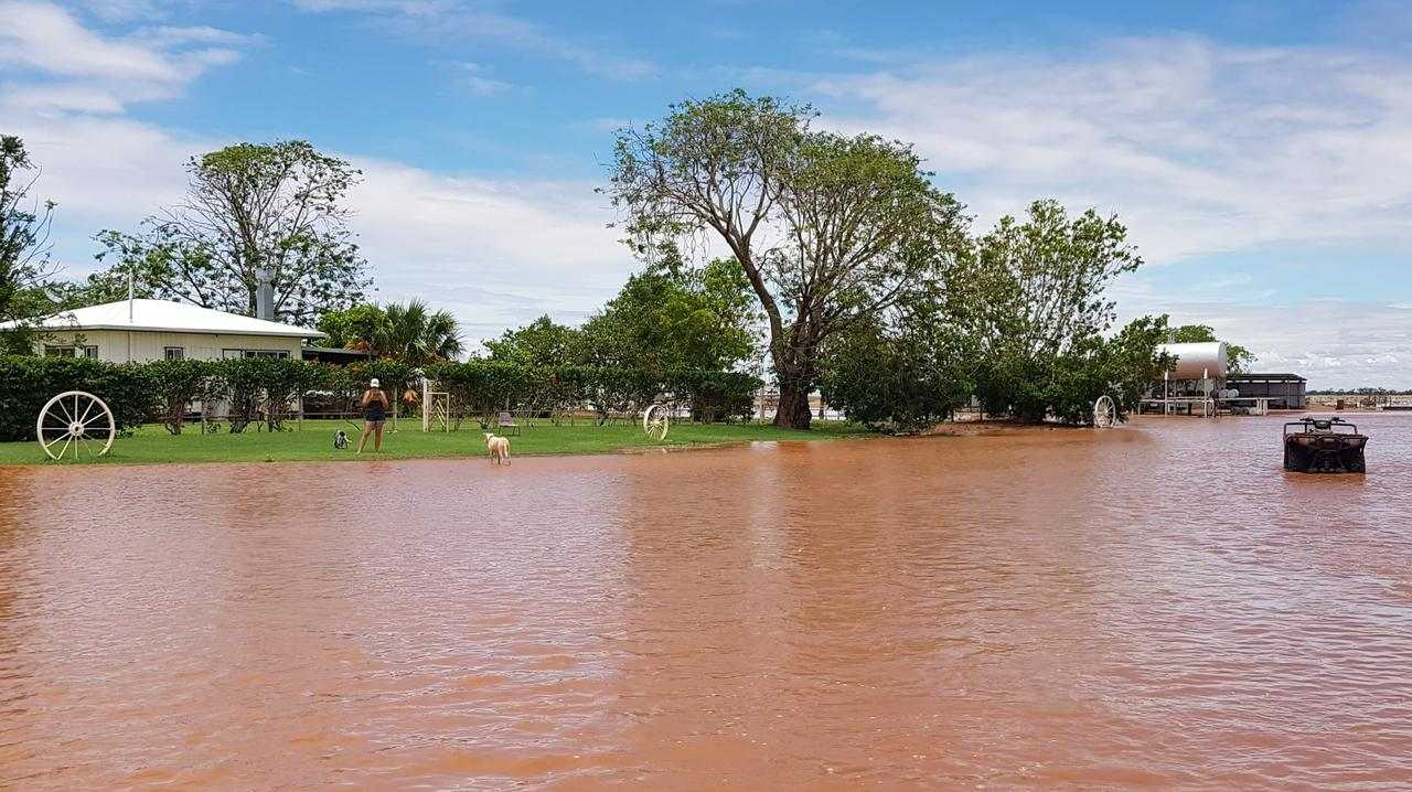A flooded paddock at Oban Station in Mount Isa. Station manager believes it will be wettest January in a decade Picture: Grant Lowe