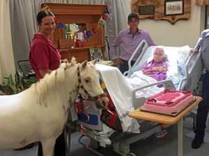 Desperate plea for therapy pony's vet bills