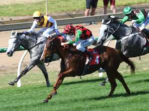 Lismore's Queen chases 9th win on the track