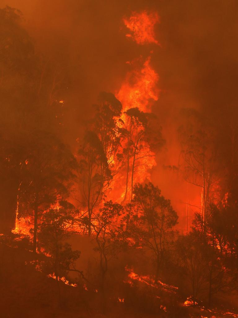 Flames in the Bega Valley, near Wyndham.