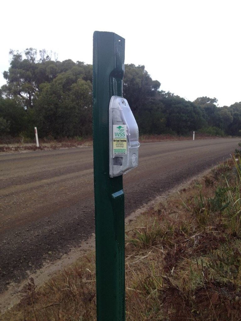 One of the virtual fence devices. Picture: Courtesy of the Save the Tasmanian Devil Program.