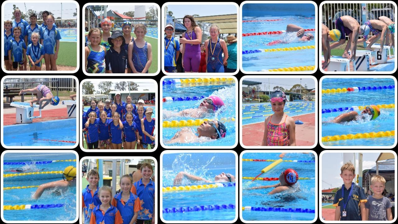 GLIDING THROUGH THE POOL: 120 competitors took part in the first ever Tara Transition Meet on Saturday.