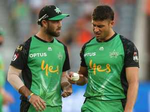 Overstocked Aussies likely have no room for BBL's best